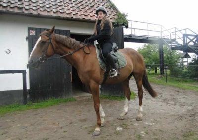 oboz-konie-2014-2-0077
