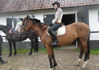 oboz-konie-2014-2-0079