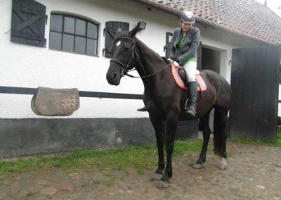 oboz-konie-2014-2-0080