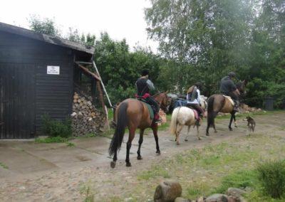 oboz-konie-2014-2-0082