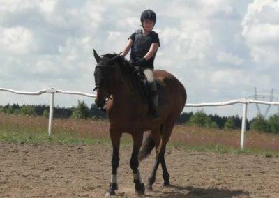 oboz-konie-2014-3-0001