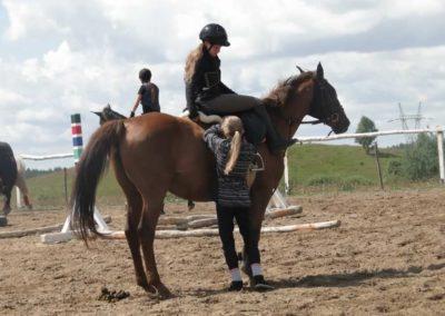 oboz-konie-2014-3-0005