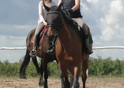 oboz-konie-2014-3-0008