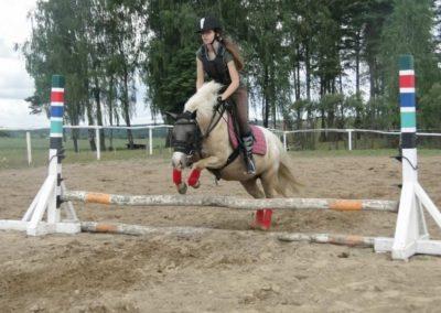 oboz-konie-2014-3-0019
