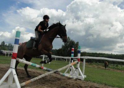 oboz-konie-2014-3-0024