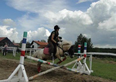 oboz-konie-2014-3-0028