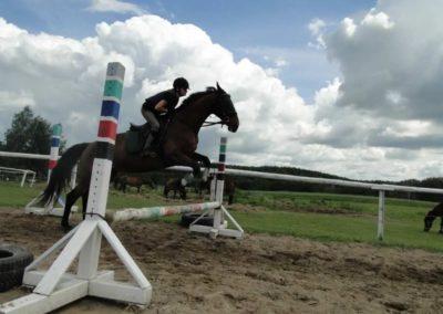 oboz-konie-2014-3-0029