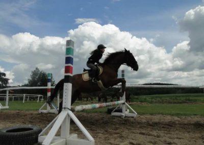 oboz-konie-2014-3-0030