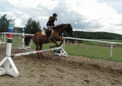 oboz-konie-2014-3-0033