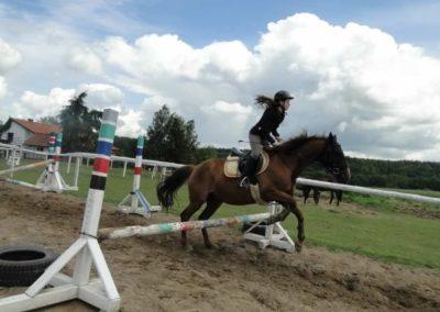 oboz-konie-2014-3-0035