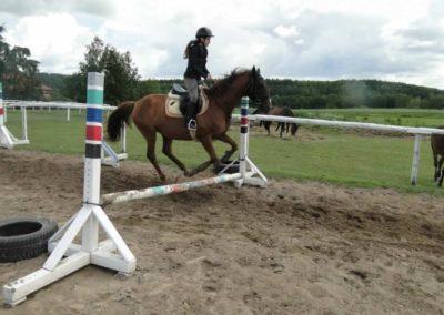 oboz-konie-2014-3-0040