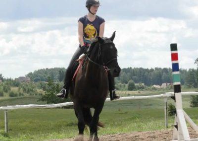 oboz-konie-2014-3-0041