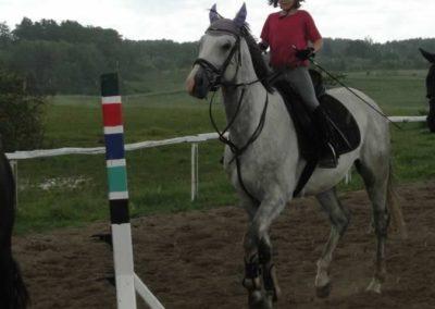 oboz-konie-2014-3-0054