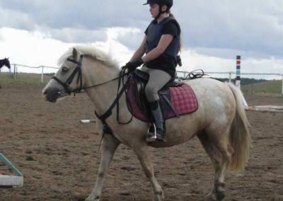 oboz-konie-2014-3-0062