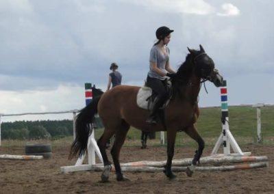 oboz-konie-2014-3-0063