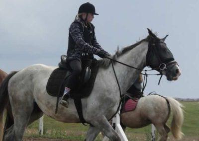 oboz-konie-2014-3-0067