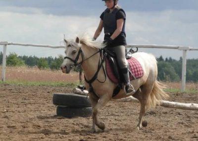 oboz-konie-2014-3-0071