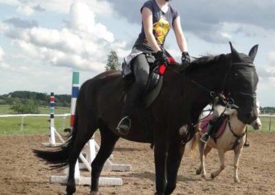 oboz-konie-2014-3-0073