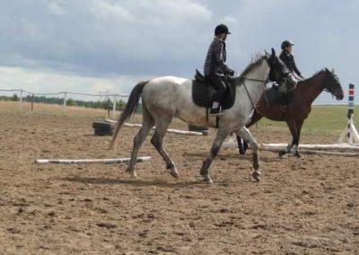 oboz-konie-2014-3-0074