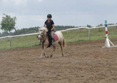 oboz-konie-2014-3-0078