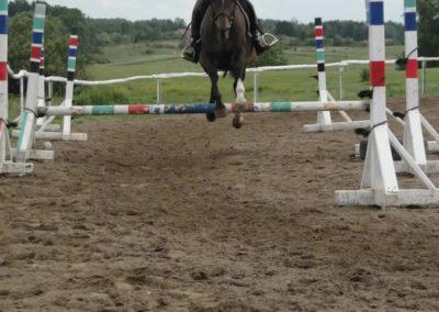 oboz-konie-2014-3-0080