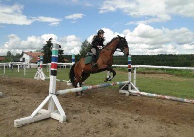 oboz-konie-2014-3-0084