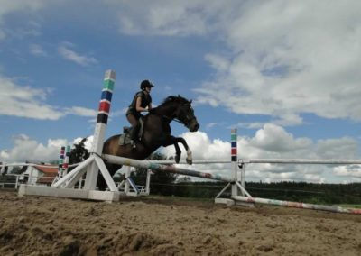 oboz-konie-2014-3-0085