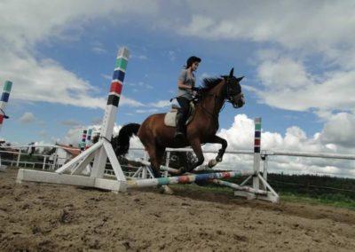 oboz-konie-2014-3-0086