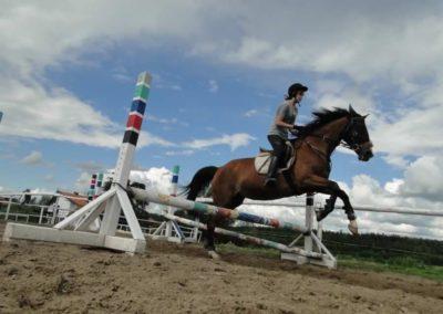oboz-konie-2014-3-0087