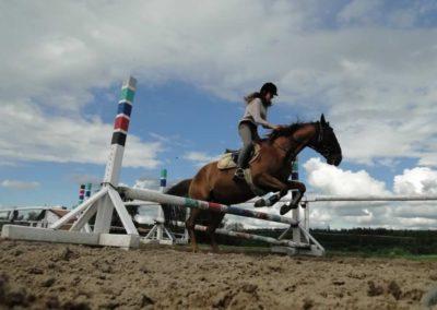 oboz-konie-2014-3-0089