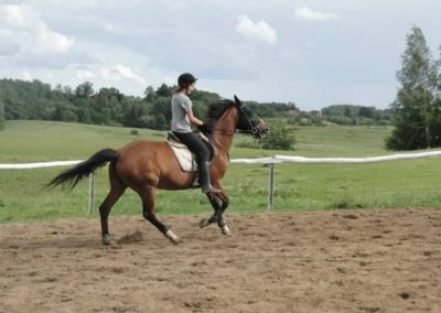 oboz-konie-2014-3-0091