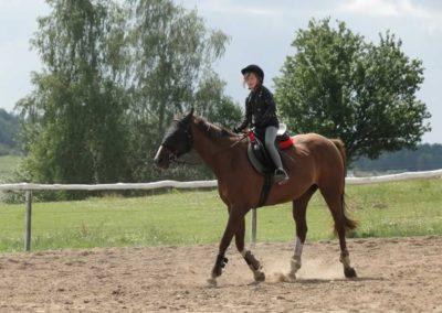 oboz-konie-2014-4-0001