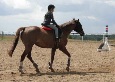 oboz-konie-2014-4-0002