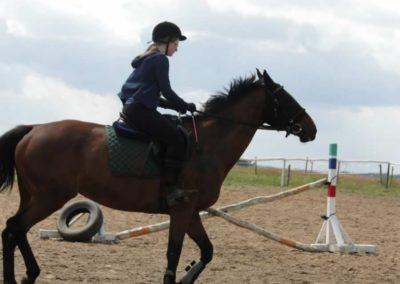 oboz-konie-2014-4-0003