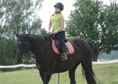 oboz-konie-2014-4-0004
