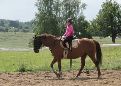 oboz-konie-2014-4-0005