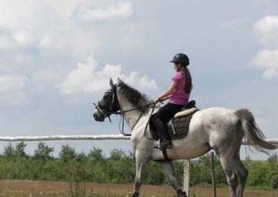 oboz-konie-2014-4-0006
