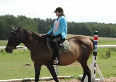 oboz-konie-2014-4-0007
