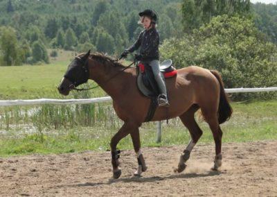 oboz-konie-2014-4-0010
