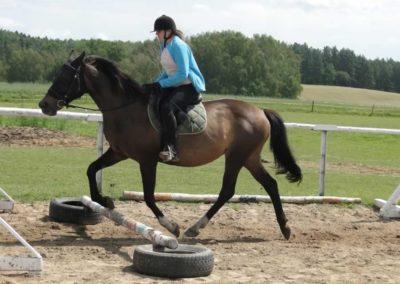 oboz-konie-2014-4-0015