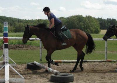 oboz-konie-2014-4-0018