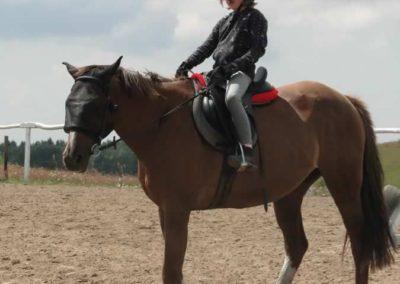 oboz-konie-2014-4-0021