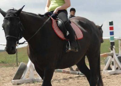 oboz-konie-2014-4-0023
