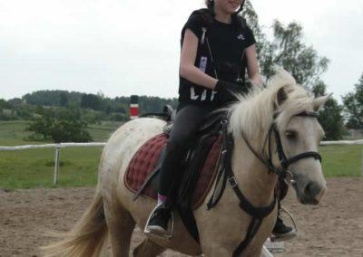 oboz-konie-2014-4-0031