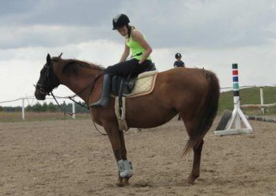 oboz-konie-2014-4-0032