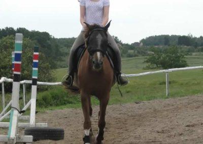 oboz-konie-2014-4-0035