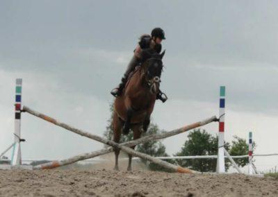 oboz-konie-2014-4-0040