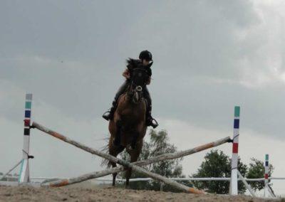 oboz-konie-2014-4-0041