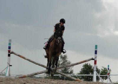 oboz-konie-2014-4-0042