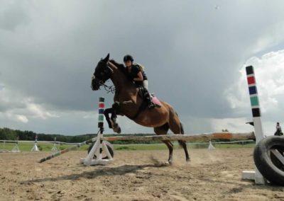 oboz-konie-2014-4-0043